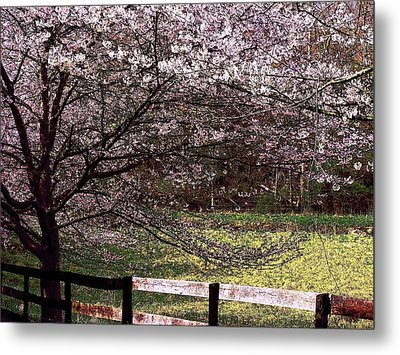 Petals In The Wind Metal Print by Joyce Kimble Smith