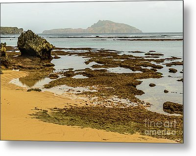 Metal Print featuring the photograph Phillip Island 01 by Werner Padarin