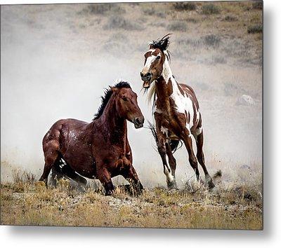 Picasso - Wild Stallion Battle Metal Print