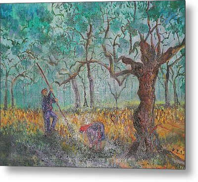 Picking Olives Metal Print by Lore Rossi