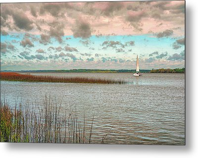 Pigeon Point Metal Print by Donnie Smith
