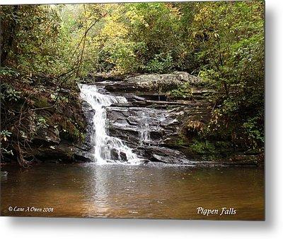 Pigpen Falls Oconee County Sc Metal Print by Lane Owen