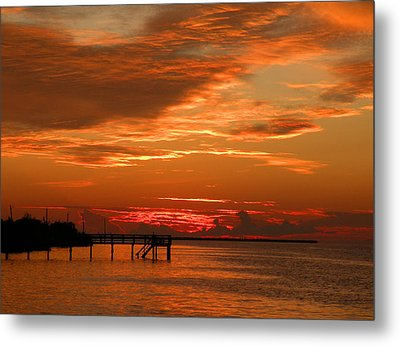 Metal Print featuring the photograph Pine Island Sunset by Rosalie Scanlon