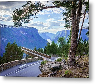 Metal Print featuring the photograph Pine On Stegastein by Dmytro Korol