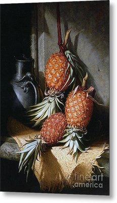 Pineapples, Circa 1880 Metal Print