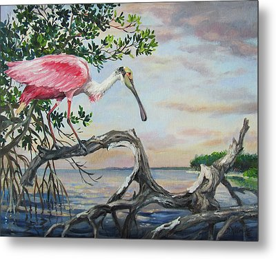 Pink Lady Metal Print by Dianna  Willman