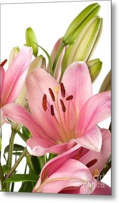 Pink Lilies 07 Metal Print by Nailia Schwarz