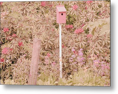Metal Print featuring the photograph Pink Nesting Box by Bonnie Bruno