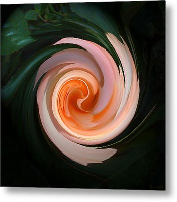 Pink Swirl Metal Print by Barbara Oberholtzer