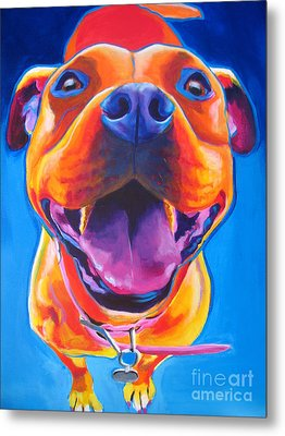 Pit Bull - Lots To Love Metal Print by Alicia VanNoy Call