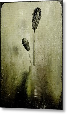 Pods In A Vase Metal Print
