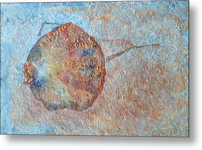 Pomegranate Seed Pod Metal Print by Diana Davenport