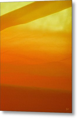 Poncho Abstract 10 Metal Print by Jeff Breiman