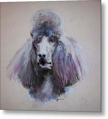 Poodle In Blue Metal Print