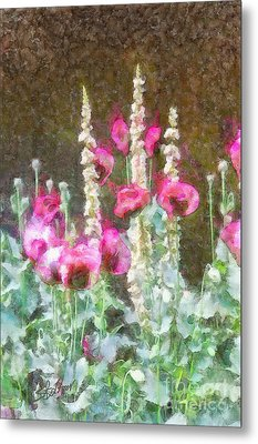 Poppies And Verbascum 2 Metal Print by Shirley Stalter