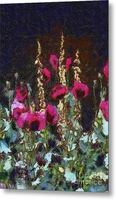 Poppies And Verbascum Metal Print by Shirley Stalter