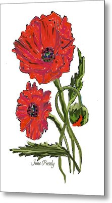 poppies by June Pressly Metal Print by June Pressly