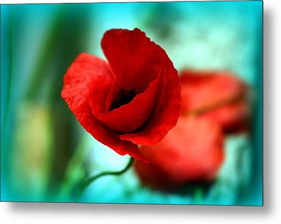 Metal Print featuring the photograph Poppy Flower by Emanuel Tanjala