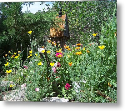 Metal Print featuring the photograph Poppy Garden by P Maure Bausch
