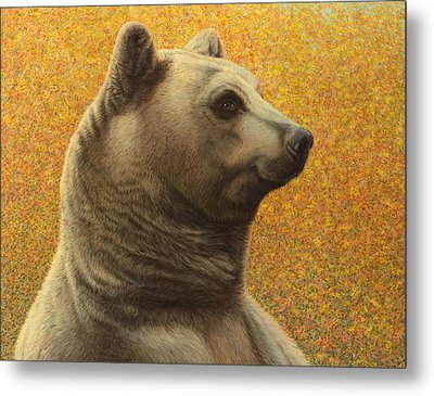 Portrait Of A Bear Metal Print