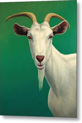 Portrait Of A Goat Metal Print by James W Johnson