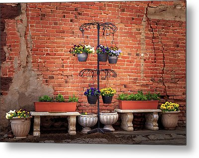 Metal Print featuring the photograph Potted Plants And A Brick Wall by James Eddy
