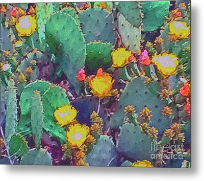 Prickly Pear Cactus 2 Metal Print