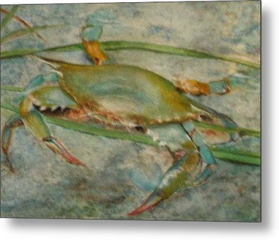 Propa Blue Crab Metal Print by Sibby S