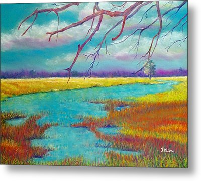 Protect The Wetlands Metal Print