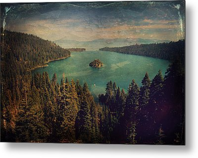 Protection Metal Print by Laurie Search