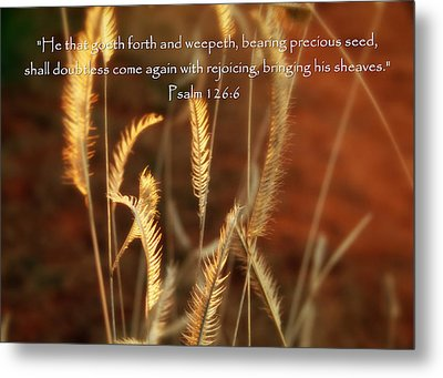 Psalm 126 6 Grain Metal Print