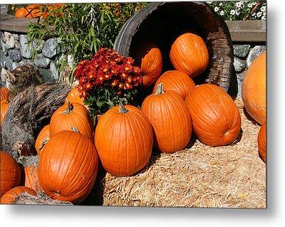 Pumpkins- Photograph By Linda Woods Metal Print by Linda Woods