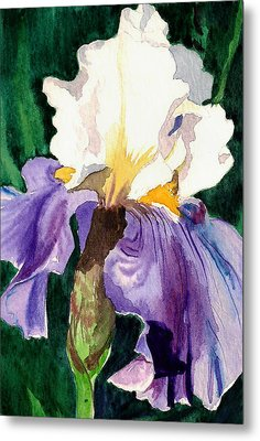 Purple And White Iris Metal Print by Janis Grau