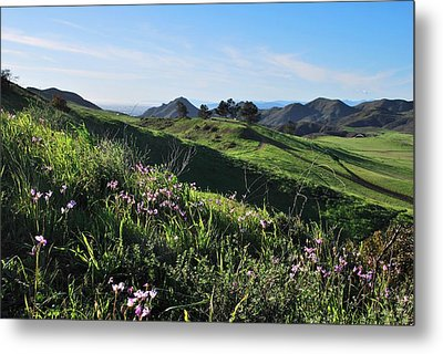 Metal Print featuring the photograph Purple Flowers And Green Hills Landscape by Matt Harang