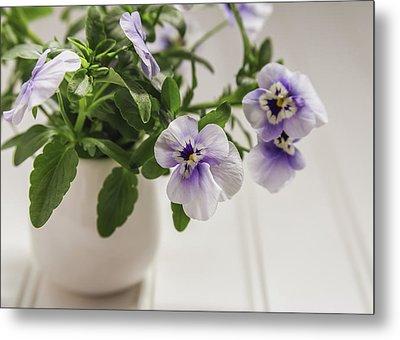 Metal Print featuring the photograph Purple Pansy Flowers by Kim Hojnacki