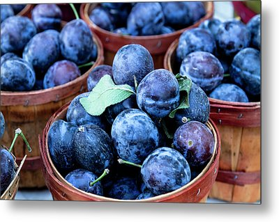 Purple Plums Metal Print