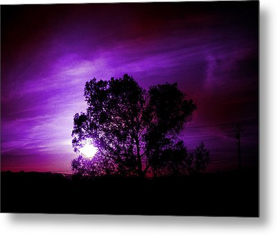 Purple Sunset Metal Print by Robert Ball
