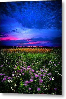 Purples Metal Print