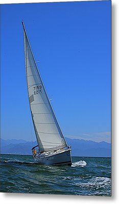 Metal Print featuring the photograph Pv Regatta Mexico by Nicola Fiscarelli