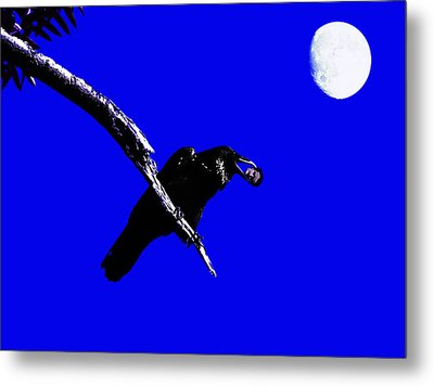 Quoth The Raven Nevermore . Blue Metal Print by Wingsdomain Art and Photography