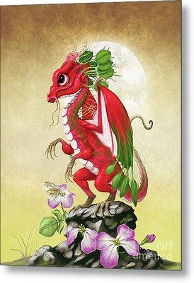 Radish Dragon Metal Print by Stanley Morrison
