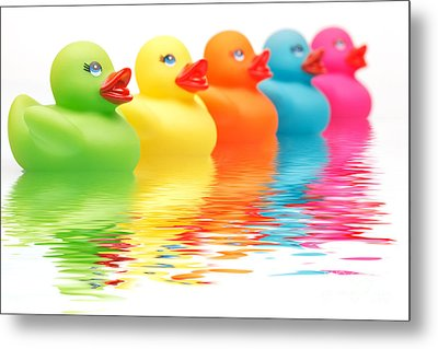 Rainbow Ducks Metal Print by Martin Williams