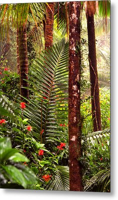 Rainforest Palms And Hibiscus Metal Print by Thomas R Fletcher