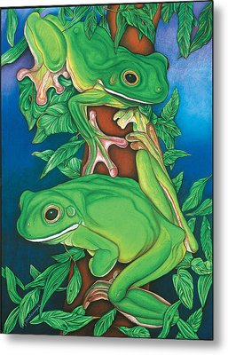 Rainforest Rendezvous Metal Print by Lesley Smitheringale