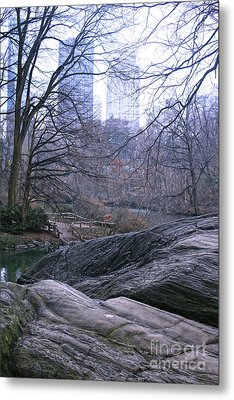 Rainy Day In Central Park Metal Print by Sandy Moulder