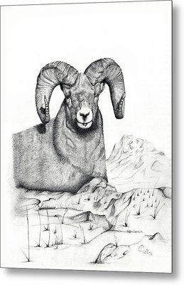 Metal Print featuring the drawing Ram by Mayhem Mediums