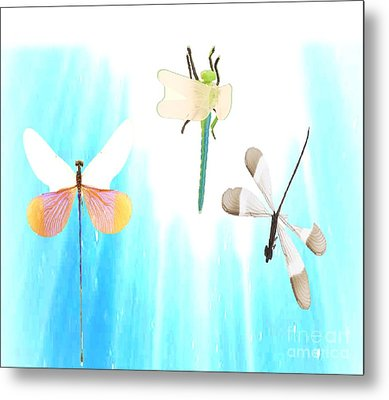 Realization Of Life Metal Print by Belinda Threeths