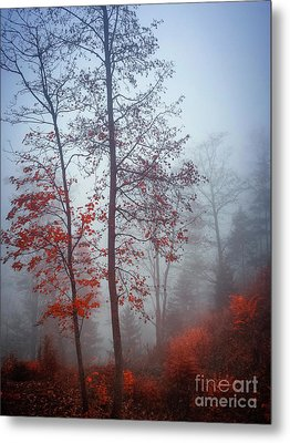Red And Blue Metal Print