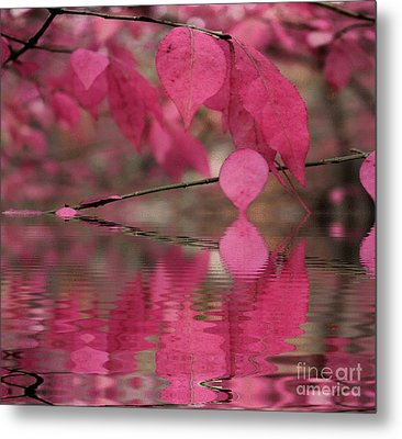Red Autumn Leaf Reflections Metal Print