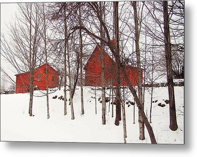 Red Barns Metal Print by Betsy Zimmerli